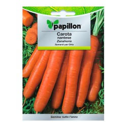 Semillas Zanahoria Nantes Temprana (7 Gramos). Semillas Verduras, Horticultura, Horticola, Semillas Huerto.